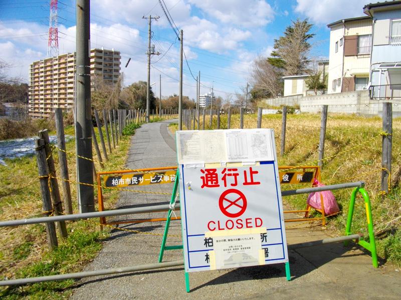 Власти Японии должны прислушаться к мнению народа в вопросе ядерной энергетики — Грэм Лэнд