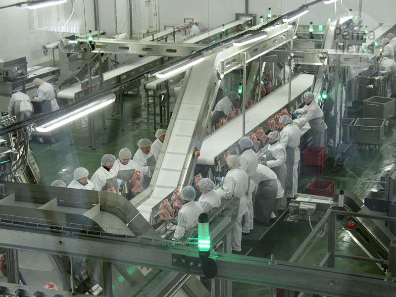 Порезультатам постране отмечается увеличение производства продукции птицеводства на3,2%