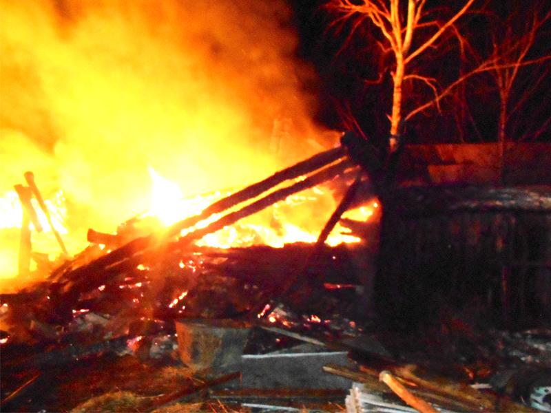 Под Пензой дотла сгорел дом ивсе постройки натерритории участка
