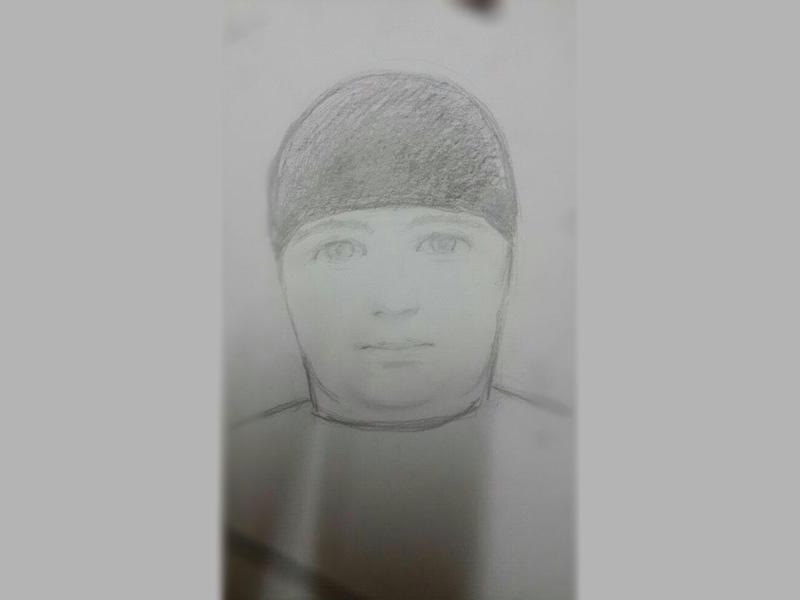 ВПензе разыскивают извращенца, напавшего на11-летнюю девочку