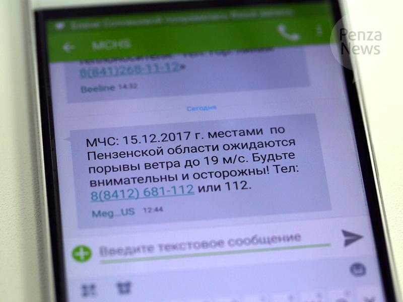МЧС предупредило граждан Пензенской области обусилении ветра