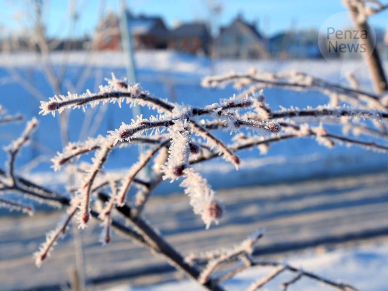 Шведские ученые отыскали полую снежинку схоботком