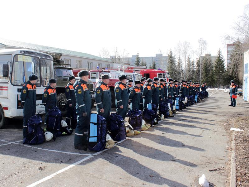 ВПензенской области отрепетировали ликвидацию природного пожара