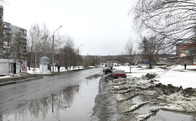Пензенского губернатора возмутил остающийся после таяния снега мусор. Фото из архива ИА «PenzaNews»