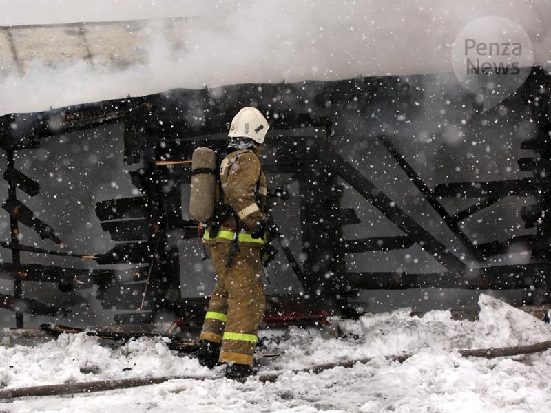 Пензенские пожарные вытянули изгорящего дома человека