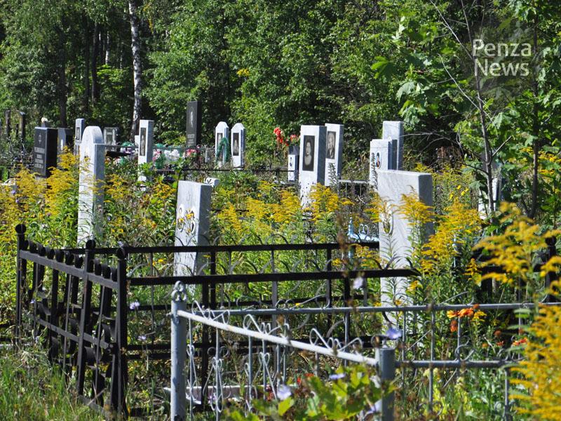 ВПензенской области сельчане похитили смогилы ограду