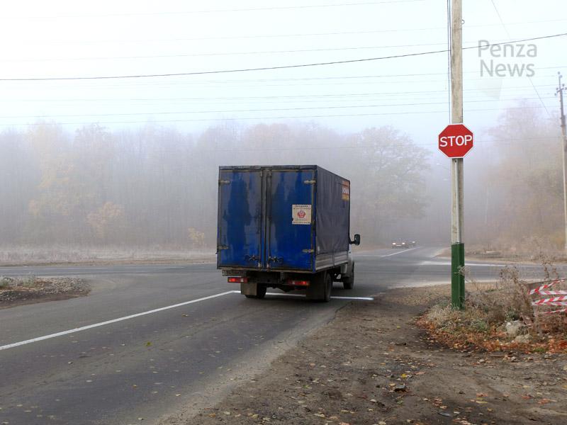Молодая женщина подозревается вкраже дорожного знака вПензенской области