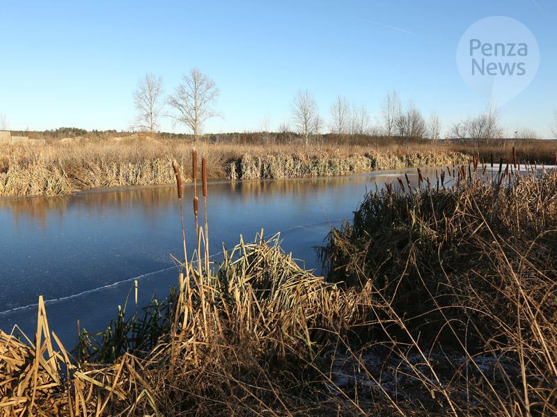 ВКраснодарском крае пропал 10-летний парень