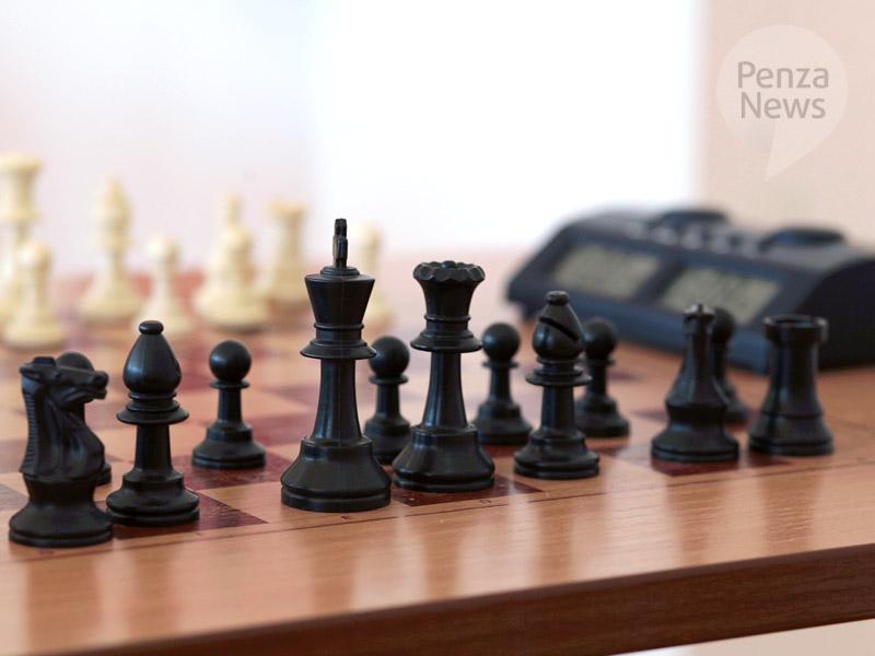 ВПензенской области создадут ученическую шахматную лигу